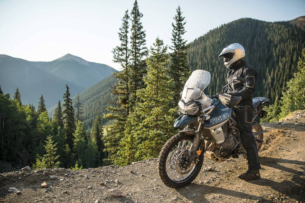 Moto Triumph parada com piloto contemplando uma floresta
